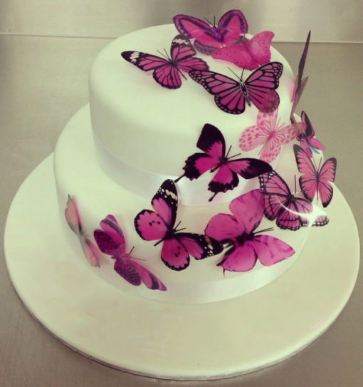 Purple Butterfly Cake in lahore